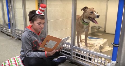 Kid Reading to Dog