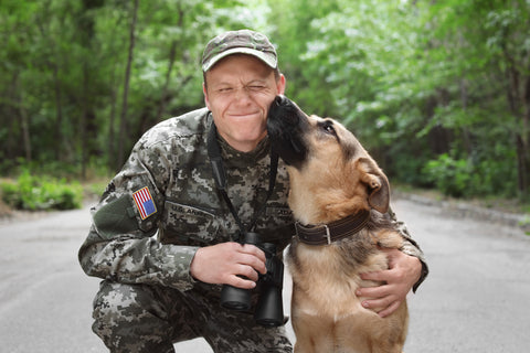 Veteran And Dog