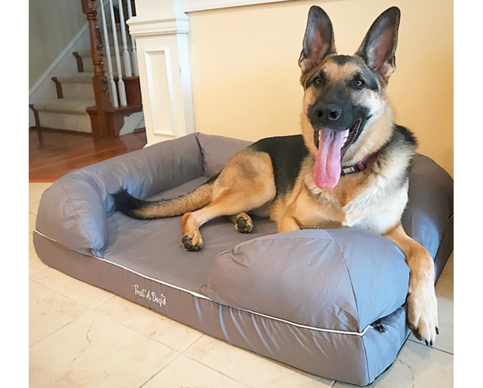 Memory Foam Dog Bed Puplounge Treat A Dog Shop Usa