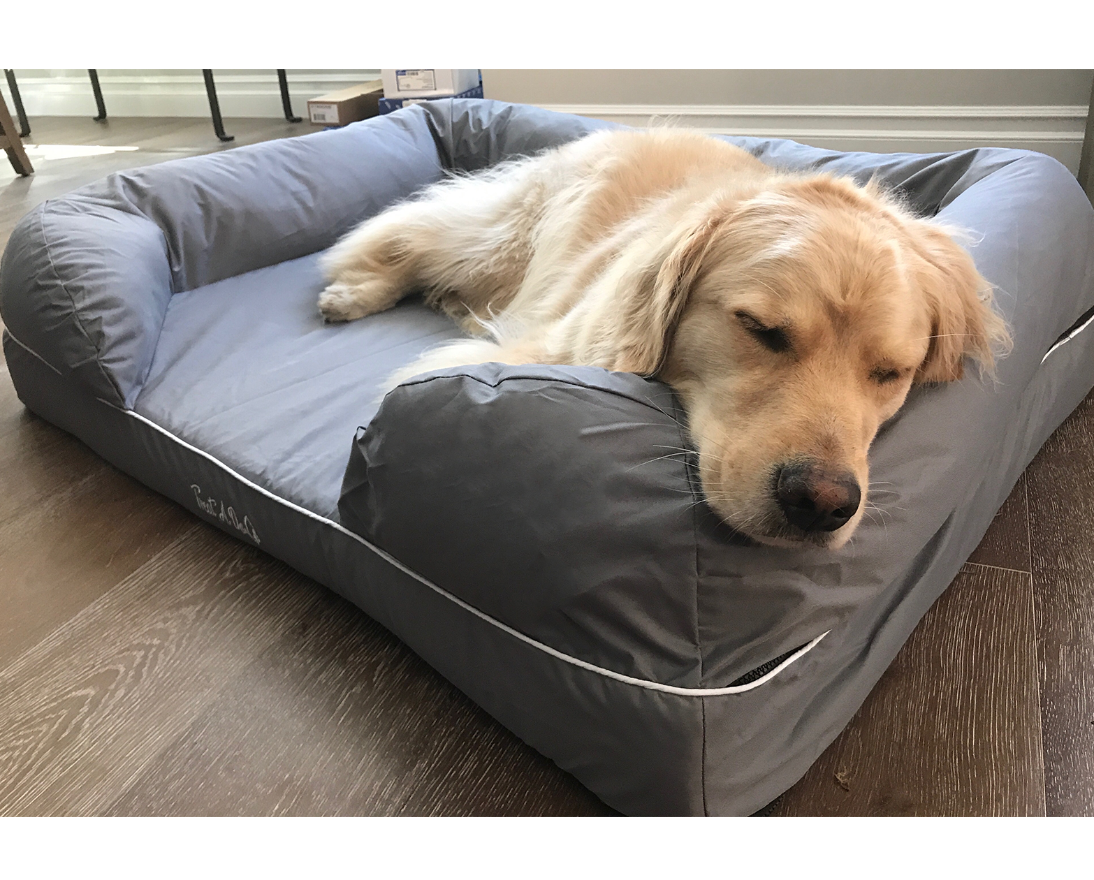 alibaba manufacturers amazon foam bed at orthopedic memory showroom dog com and pet suppliers
