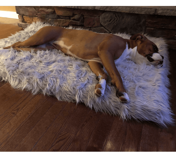 PupRug Faux Fur Memory Foam Orthopedic Bed. Use coupon code SHOPWITHME10 for 10% Off