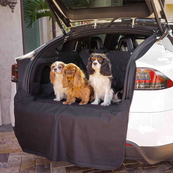 Treat A Dog Trunk Protector