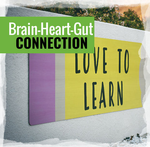 The Brain-Heart-Gut Connection | Three-Part Class