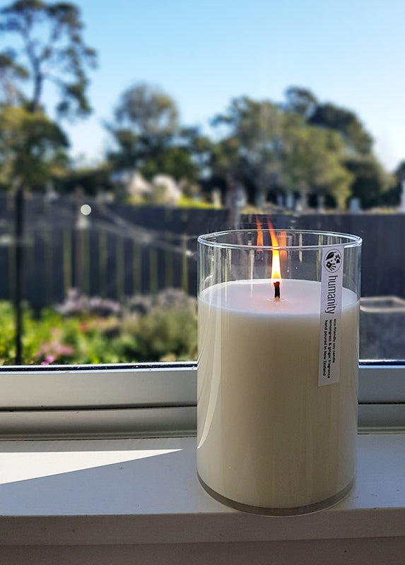 Lemongrass & Ginger - Extra Large Cotton Wick Candle
