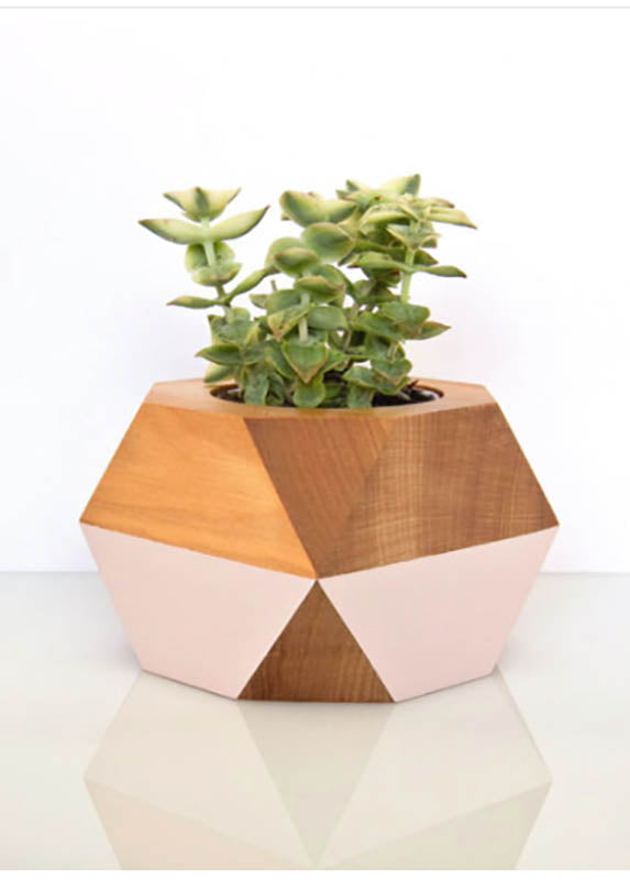 Gwyneth Hulse Design Totara Succulent Pot - humanity : style with a conscience