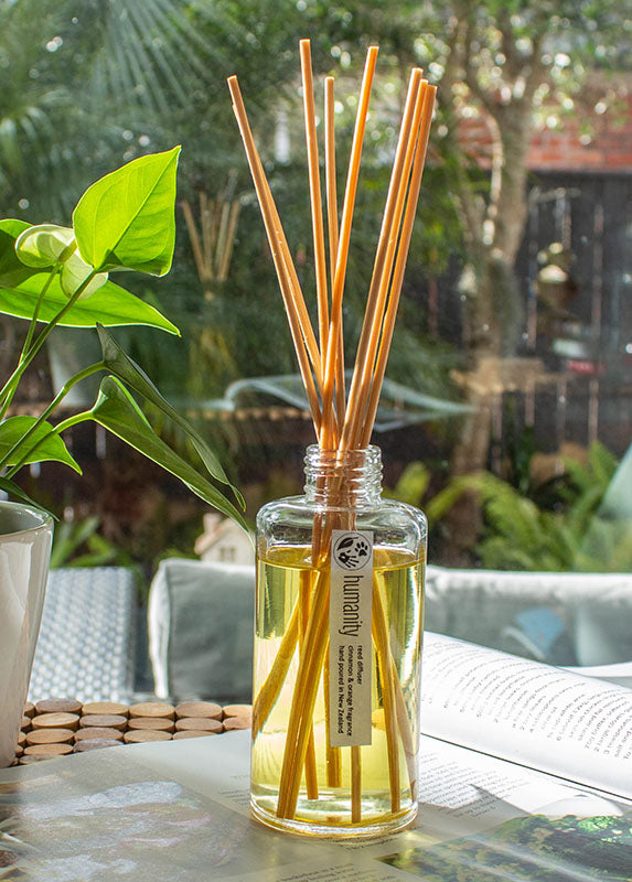 Cinnamon Orange - Reed Diffuser