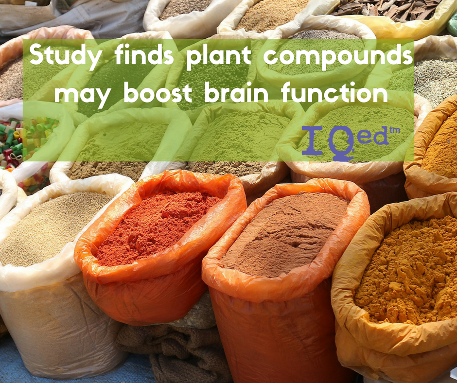 Study finds plant compounds may boost brain function