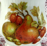 Fall Fruit And Nuts English Mug Bone China Mayfair England - Antiques And Teacups - 3