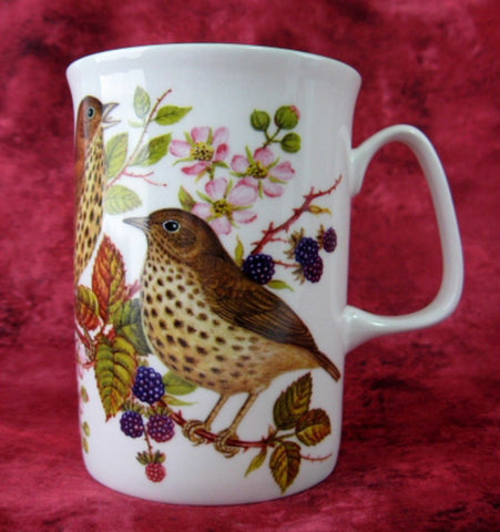 Mug English Thrush English Bone China Birds New Blackberries - Antiques And Teacups - 1