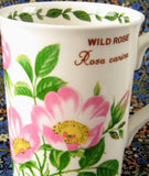 Mug Wild Rose Botanical English Bone China Crown Trent Pink Roses - Antiques And Teacups - 1