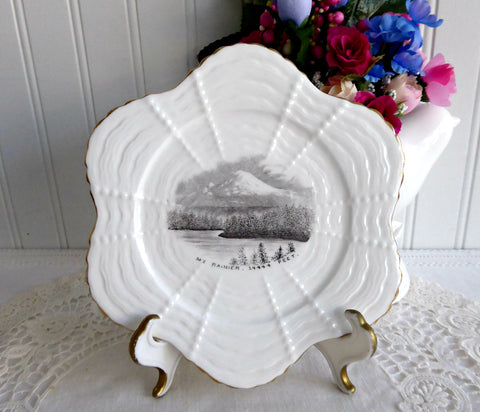 Victorian Shelley Wileman Plate Mt. Rainier Rare Shell Shape 1880s For Cowley Seattle