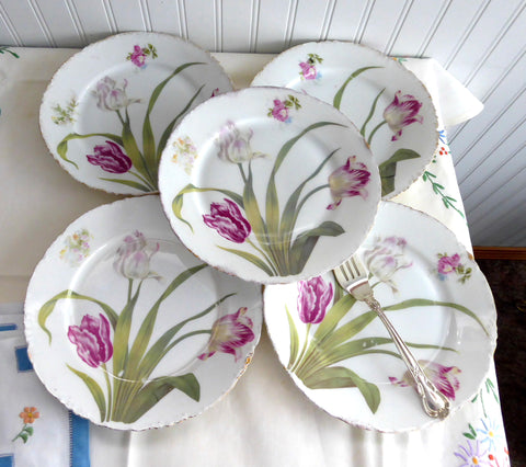 Rosenthal Versailles 5 Salad Plates Edwardian Botanlical Plates 1910s Victorian : versailles dinnerware - Pezcame.Com