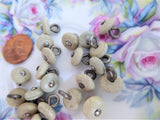 High Button Shoe Buttons 21 Glove Buttons Taupe Vegetable Ivory 1890s Victorian