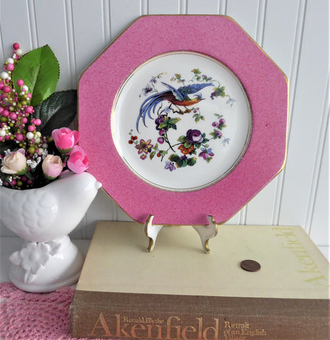 Fantasy Bird Plate Pink Hexagonal Edwardian Fantasy Bird Wedgwood 1906
