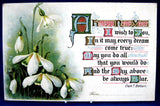 Antique New Year 1906 Postcard Postcard Happy New Year Snowdrops Poem Maine