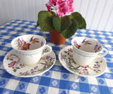 Swallow Wedgwood Cup And Saucer Pair Polychrome Transferware 1920s Cream Ware