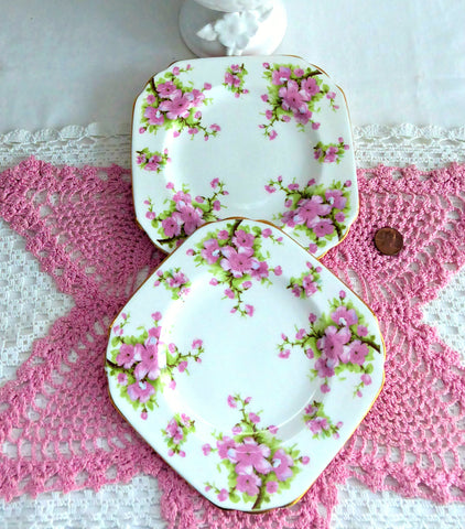 Side Plate Pair Chelsea Pink Peach Blossoms English Bone China 6 Inch Square