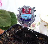 Tea Caddy Spoon Rhyl Tea Scoop Souvenir Teabag Caddy 1930s Enamel Finial