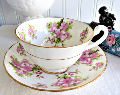 Cup And Saucer Royal Chelsea Pink Peach Blossoms 1936-1943 English Bone China