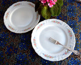 Pair Winterling Dinner Plates Bavarian Mayerling Floral Swags 10 Inches 1940s Porcelain