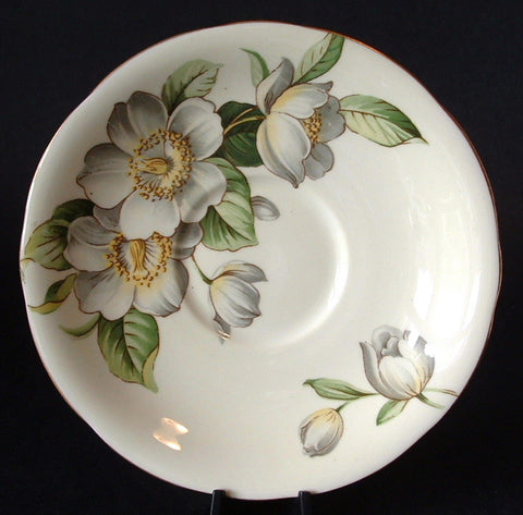 Saucer England Bone China Aynsley Dogwood Vintage Saucer Only