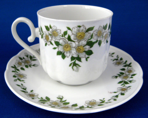 Bavarian Apple Blossom Cup And Saucer Porcelain Seltmann 1946-1970