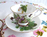 Fruit Cup And Saucer Royal Chelsea Pears Strawberries England 1960s Butterflies