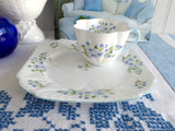 Shelley China Dainty Blue Rock Cup and Plate Snack Set Buffet Tennis Tea And Toast England