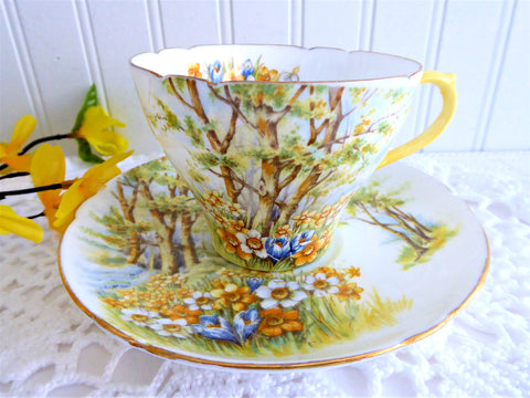 Shelley Daffodil Time Cup and Saucer 1950s Sunny Yellow Gold Trim New Cambridge