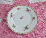 Shelley Bridal Rose Side Plate Rose Spray 1950s Richmond Shape Pink Gold Trim 6 Inch
