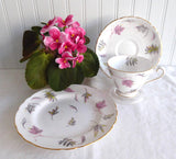 Windswept Leaves Teacup Trio 1950s Tuscan Bone China Pink Grey Green