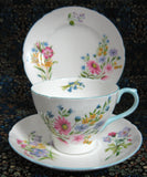 Shelley Teacup Trio Cambridge Shape Wild Flowers Cup And Saucer And Plate Blue Trim