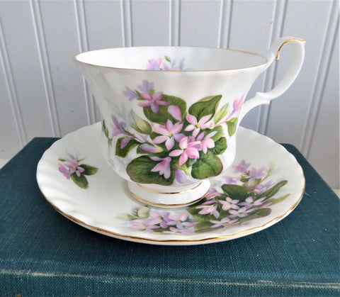 Pretty Mayflower Royal Albert Cup and Saucer Pink Blossoms Montrose Shape 1960s