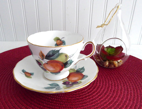 Fruit Cup and Saucer Royal Vale English Bone China 1960s Apples Berries