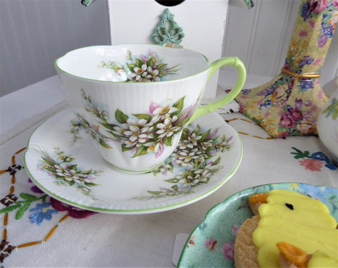 Royal Albert Orange Blossoms Tea Cup And Saucer 1960s Blossom Time Series