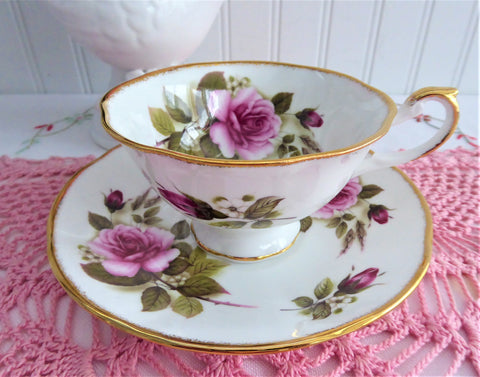 Pink Burgundy Roses Cup And Saucer Queen's Bone China 1980s English Bone China