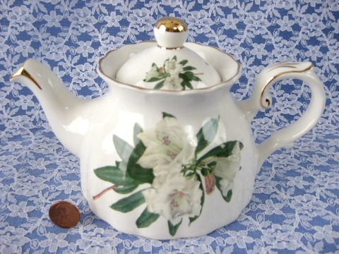 White Azalea Teapot Royal Patrician Rhododendron English 16 Ounce Unusual Shape
