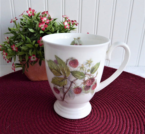 Mug Royal Patrician Fruit Festival Raspberries England Bone China 9 Ounce Pedestal
