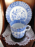 Antique Staffordshire Blue Transferware Aesthetic Cup And Saucer 1880s - Antiques And Teacups - 2