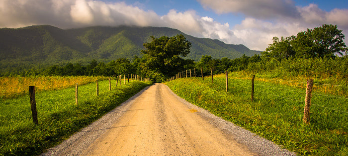 Dirt Road in Cades Cove, Tennessee