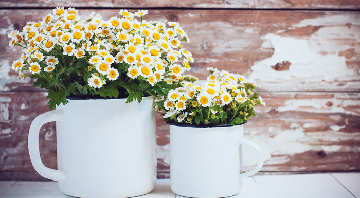 Fresh Wildflowers in White Enamelware
