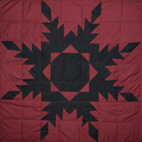 Black Feathered Star Sham