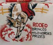 Ride 'Em Cowboy Towel Set