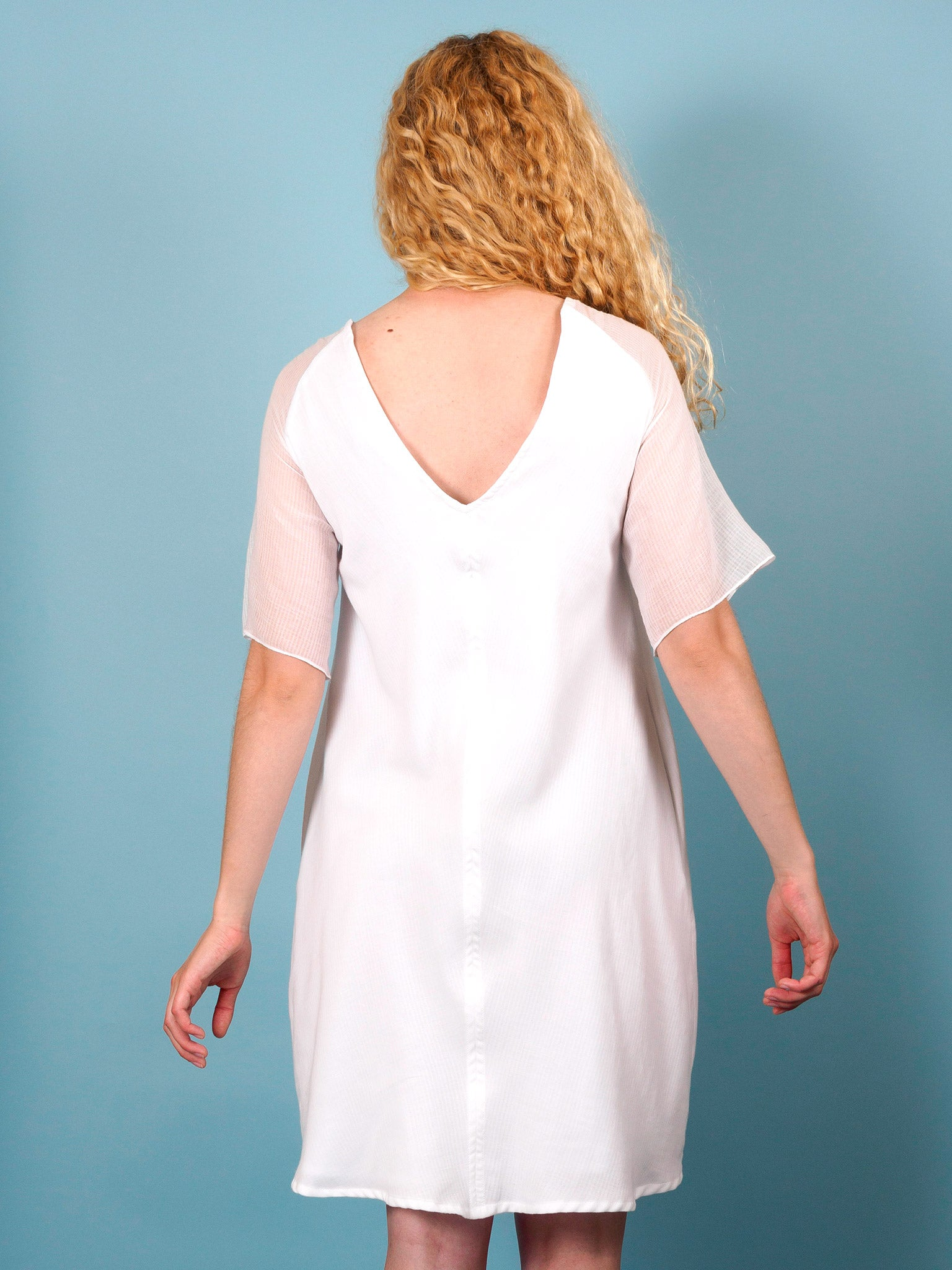 Swallow Dress in Cirrus Gauze