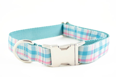 Aqua Blue and Pink Plaid Collar
