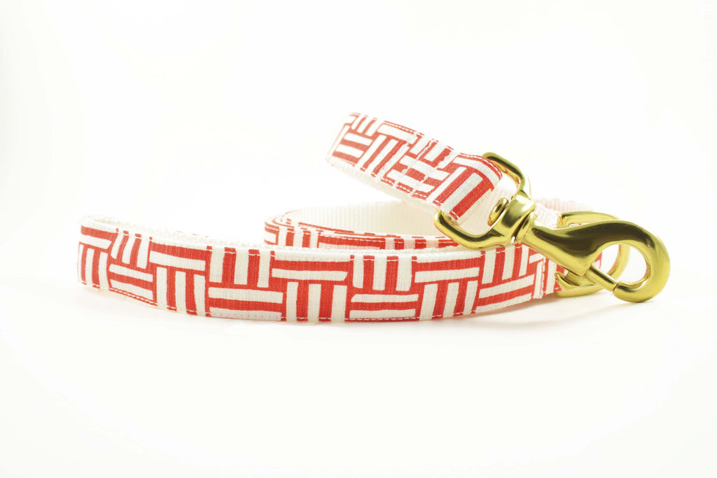 Coral Geometric Leash