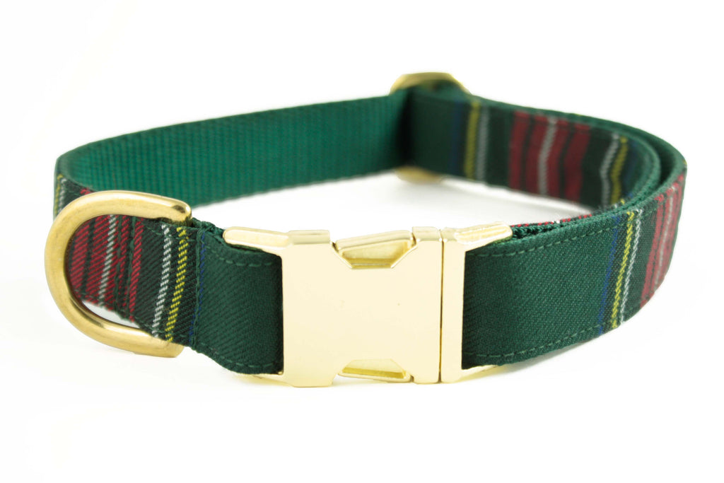 Green Tartan Plaid Collar