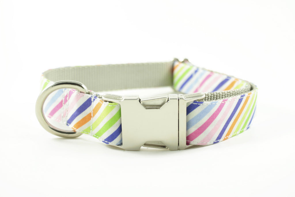 Rainbow Stripe Collar