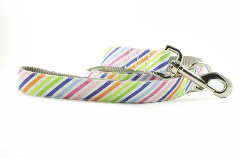 Rainbow Stripe Leash