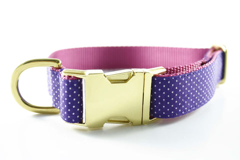 Violet Polka Dot in Pink Collar